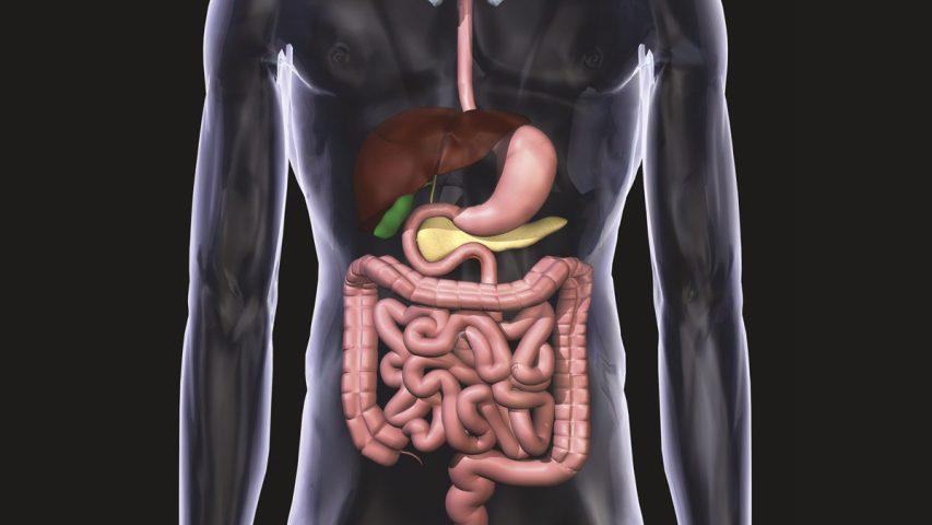 Long-Term Use Of Antibiotics May Raise Risk Of Bowel Cancer