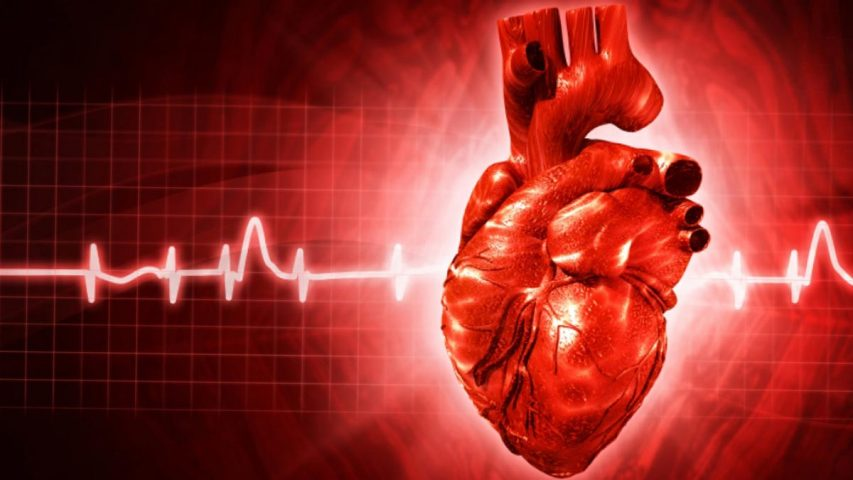 The Importance Of Minerals In Optimum Function Of The Heart And