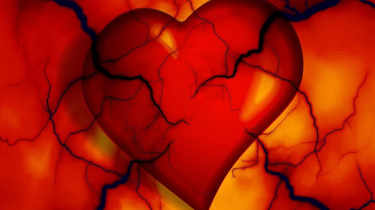 heart-2372134_1200